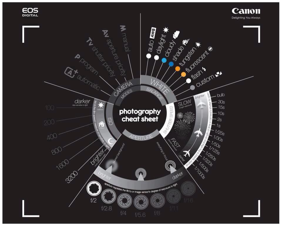 What your camera settings really do
